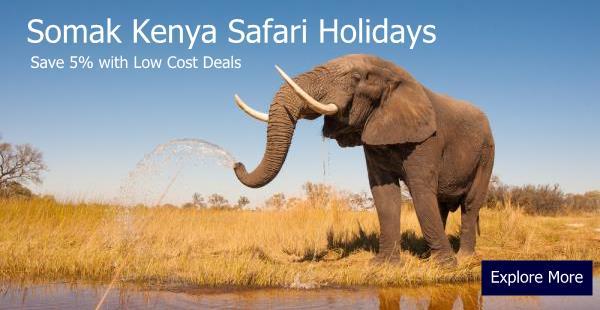 somak-kenya-elephant_OL