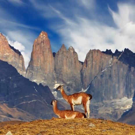 Alberto de Agostini National Park