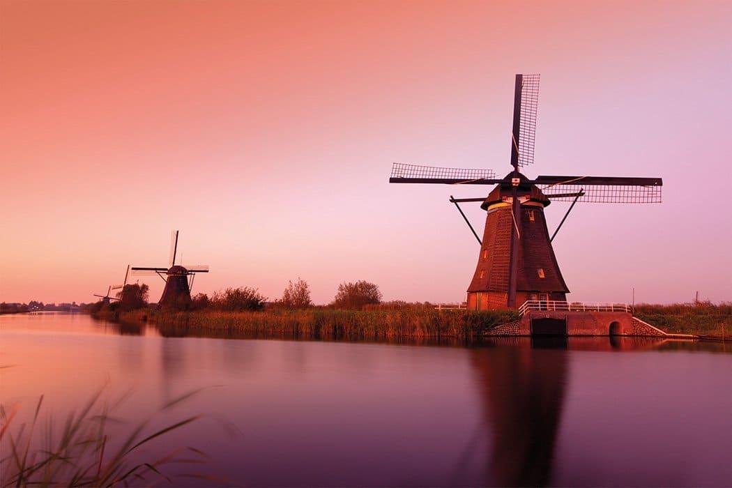 Amsterdam, Kinderdijk & the Dutch Bulbfields